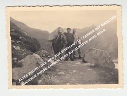 ALTES PHOTO / DER WEG ZUR BOVALHUTTE / FAHRER MIT MAULTIER - ANC. PHOTO CHEMIN VERS BOVALHUTTE AVEC MULE - GR Grisons