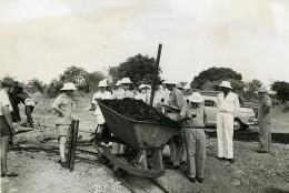Madagascar Analahiva Recherches Gisements Mines De Charbon Ancienne Photo 1950 - Africa