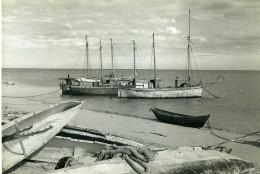 Madagascar Le Port De Soalala Bateaux De Peche ? Ancienne Photo 1950 - Africa