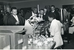 Madagascar Tananarive ? Visite D'une Entreprise? Ancienne Photo 1950 - Africa