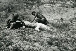 Madagascar Chasse Au Caiman Alligator Ancienne Photo 1950 - Africa
