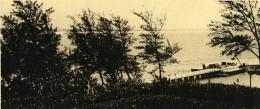 Vue Poétique De Madagascar Panorama Fort Dauphin Ancienne Photo 1937 - Africa