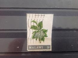 Malawi - Bloemen (3) 1971 - Malawi (1964-...)