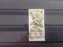 Malawi - Insecten (4) 1970 - Malawi (1964-...)