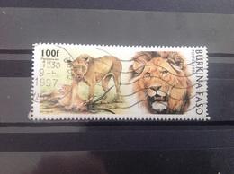 Burkina Faso - Leeuwen (100) 1996 - Burkina Faso (1984-...)