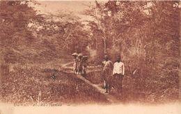 ¤¤  -  DAHOMEY   -  Une Route   -  ¤¤ - Dahomey