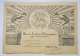 BREVET SCOLAIRE ELEMENTAIRE DE NATATION - TOULOUSE - 1935 - FEDERATION FRANCAISE DE NATATION ET DE SAUVETAGE - Diplômes & Bulletins Scolaires