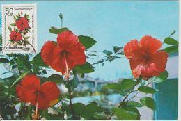 Carte Maximum Fleurs Hibiscus - Syria