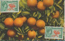 Carte Maximum Fruits Oranges - Timbres