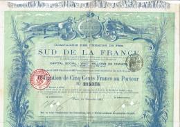 13-CHEMINS DE FER DU SUD DE LA FRANCE. 1891. Décembre - Aandelen