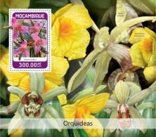 Mozambique 2018 Orchids S201806 - Mosambik