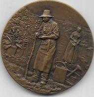 Médaille En Bronze - Société D' Horticulture  D' ELBEUF - France
