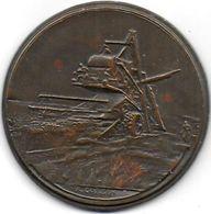 Médaille En Bronze - Moissonneuse - Prix De Lavergne  1961 - Unclassified