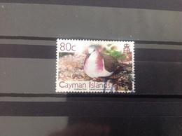 Caymaneilanden - Vogels, Duif (80) 2006 - Kaaiman Eilanden