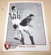 TORINO FC LE FIGURINE ERREDI  2013/14  N. 294 Nestor Combin - Other