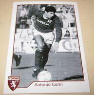 TORINO FC LE FIGURINE ERREDI  2013/14  N. 295 Antonio Comi - Other
