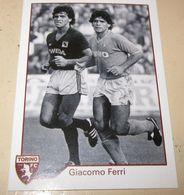 TORINO FC LE FIGURINE ERREDI  2013/14  N. 301 Giacomo Ferri Maradona - Other