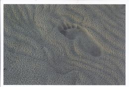 Fußspur Im Sand - Künstlerfoto Gerd Messerschmid   **40087 - Postkaarten