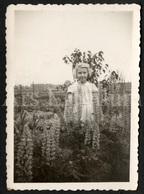 Photo Ancien / Foto / Photograph / Photo Size: 5.90 X 8.90 Cm. / Fille / Girl / Laure Haubourdin / Stambruges / 1943 - Personnes Identifiées