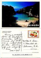 Bermuda 1980's Postcard Jobson's Cove - Bermuda
