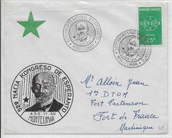 ESPERANTO - FRANCE - 1960 - ENVELOPPE Avec OBLITERATION TEMPORAIRE De MONTELIMAR - Esperanto