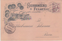 Bierbrauerei Felsenau Bei Bern - Vorläufer-Litho - 1896 - Top         (P-163-80717) - BE Berne