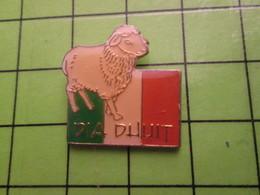 717 Pin's Pins / Beau Et Rare : Thème ANIMAUX / MOUTON DRAPEAU IRLANDE EIRE ERIN DIA DUUIT - Animals