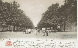 BRUXELLE-IXELLES-AVENUE LOUISE- - Avenues, Boulevards