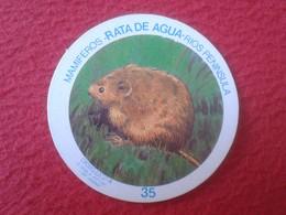 SPAIN ESPAGNE. ANTIGUO OLD CROMO ESTAMPA 35 CROMOJUEGO 1982 MAMÍFEROS RATA DE AGUA RÍOS PENÍNSULA WATER RAT VER FOTO/S - Cromos