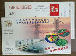 Greenhouse Vegetable Planting,Pepper,Cauliflower,CN 03 Jiahe Pollution-free Vegetables Company Adv Pre-stamped Card - Vegetables