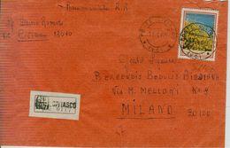FLORA £.170 (S1107),ISOLATO TARIFFA LETTERA RACCOMANDATA,1969,TIMBRO POSTE CIVIASCO (VERCELLI), - 1961-70: Storia Postale