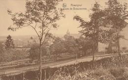 Rossignol ,à La Route De Breuvannes - Tintigny