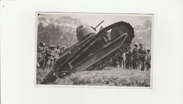 Panzer (Widmer Walenstadt ) (530) - Matériel