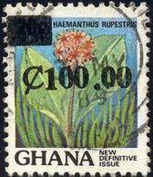 Plant, Haemanthus Rupestris, Ghana Stamp SC#1096 Used - Ghana (1957-...)