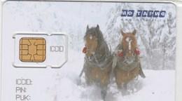 CARTE TELEPHONIQUE ST-PETERSBURG. - Russia