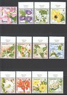 O097 PITCAIRN ISLANDS FLORA FLOWERS !!! SILVER MICHEL 26 EURO SET MNH - Plants