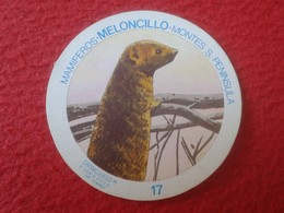 SPAIN ESPAGNE. ANTIGUO OLD CROMO ESTAMPA 17 CROMOJUEGO 1982 MAMÍFEROS MELONCILLO MONTES S. PENÍNSULA VER FOTO/S Y DESCRI - Cromos