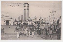 La Pallice-Rochelle, Déchargement Du Magellan - La Rochelle