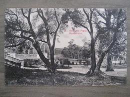 Tarjeta Postal Postcard - Uruguaya Uruguay Montevideo - Vidsta Del Prado - 36 - Uruguay