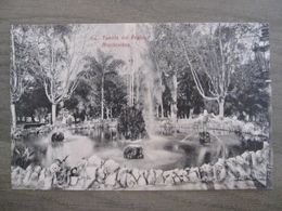 Tarjeta Postal Postcard - Uruguaya Uruguay Montevideo - Fuente Del Prado - 354 - Uruguay