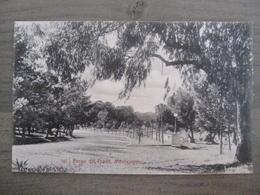 Tarjeta Postal Postcard - Uruguaya Uruguay Montevideo - Paseo Del Prado - 340 - Uruguay