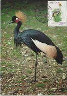 Carte Maximum 1984 Oiseaux Balearica 689F - Angola
