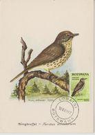 Carte Maximum 1967 Oiseaux Grive 173 - Botswana (1966-...)