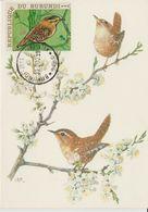 Carte Maximum 1970 Oiseaux Yv  399 - Autres