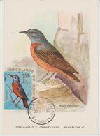 Carte Maximum 1970 Oiseaux Yv 404 - Burundi