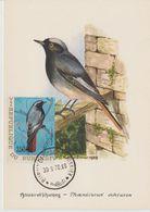 Carte Maximum 1970 Oiseaux Yv 405 - Burundi