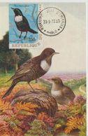 Carte Maximum 1970 Oiseaux Yv 406 - Autres