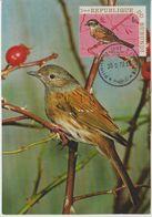 Carte Maximum 1970 Oiseaux Yv 408 - Burundi