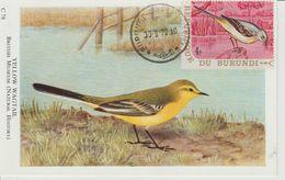 Carte Maximum 1970 Oiseaux Yv 409 - Burundi