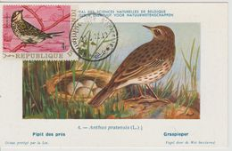 Carte Maximum 1970 Oiseaux Yv 410 - Burundi